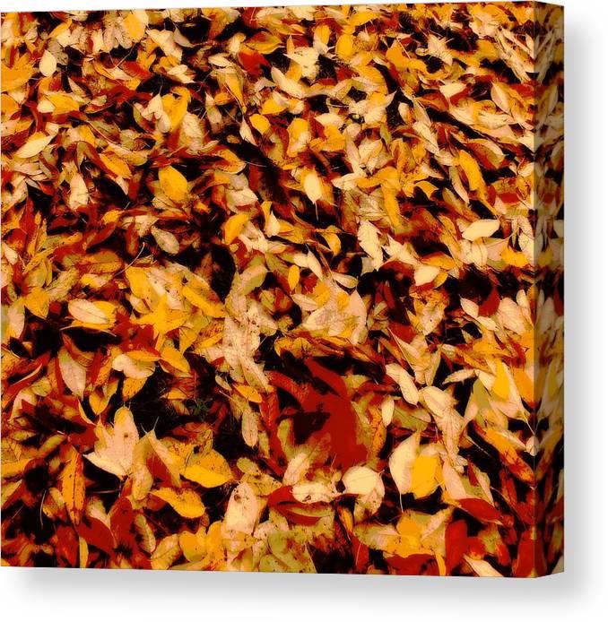 Leaf Canvas Print featuring the digital art Fallen Leaves by Tg Devore