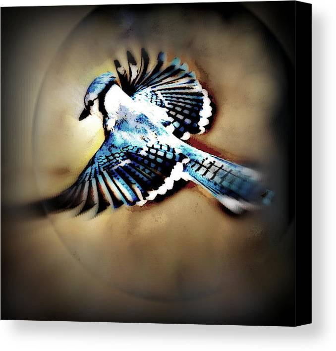 Bluejay Canvas Print featuring the mixed media Betty Bluejay by YoMamaBird Rhonda