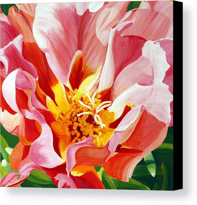 Macro Flower Canvas Print featuring the painting Moss Rose by Julie Pflanzer