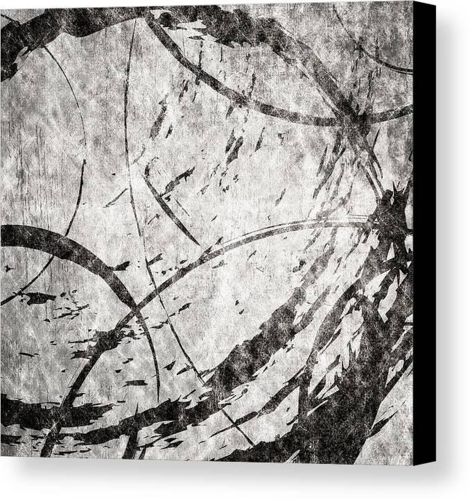 Brett Canvas Print featuring the digital art Circles by Brett Pfister
