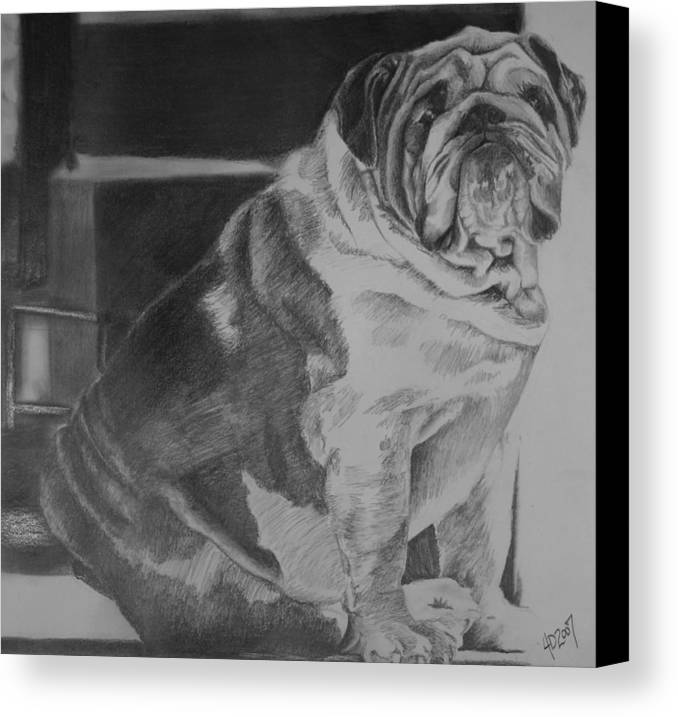 Dog Canvas Print featuring the drawing Making Laugh Lines Trendy by Darcie Duranceau
