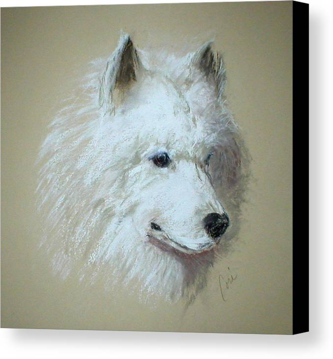 Dog Canvas Print featuring the drawing Arctic Serenity by Cori Solomon