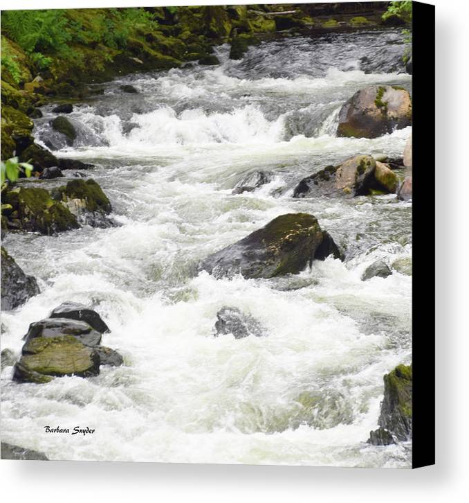 Barbara Snyder Canvas Print featuring the photograph Ketchikan Creek Of Creek Street Detail by Barbara Snyder