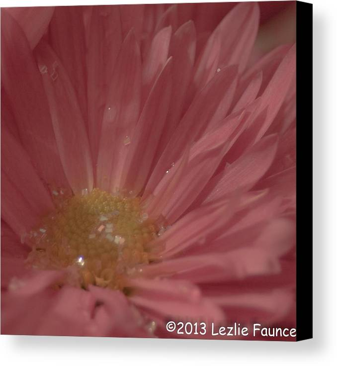 Pink Canvas Print featuring the photograph Sparkling Pink by Lezlie Faunce