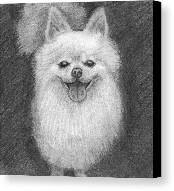 Dog Canvas Print featuring the drawing A Doggie 4 Xmas by Katie Alfonsi