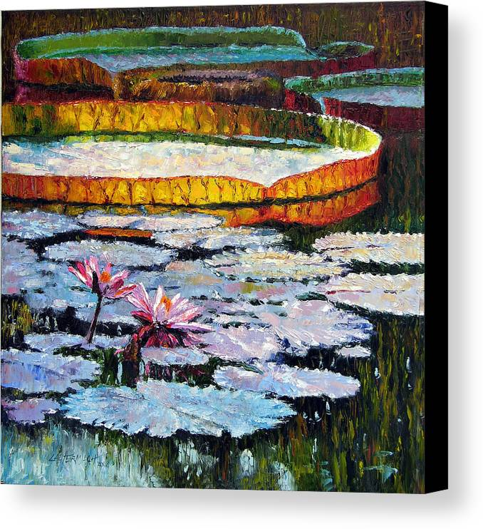 Water Lilies Canvas Print featuring the painting Afternoon Shadows by John Lautermilch