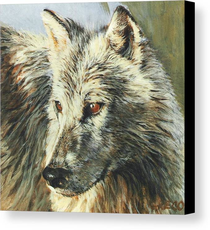 Wolf Canvas Print featuring the painting Arctic Wolf by Steve Greco