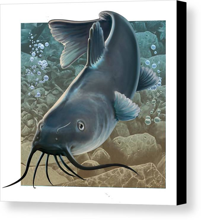 Fish Canvas Print featuring the digital art Catfish by Valer Ian