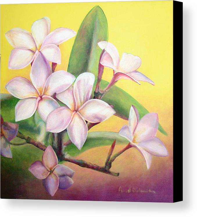 Floral Painting Canvas Print featuring the painting Frangipanier by Muriel Dolemieux