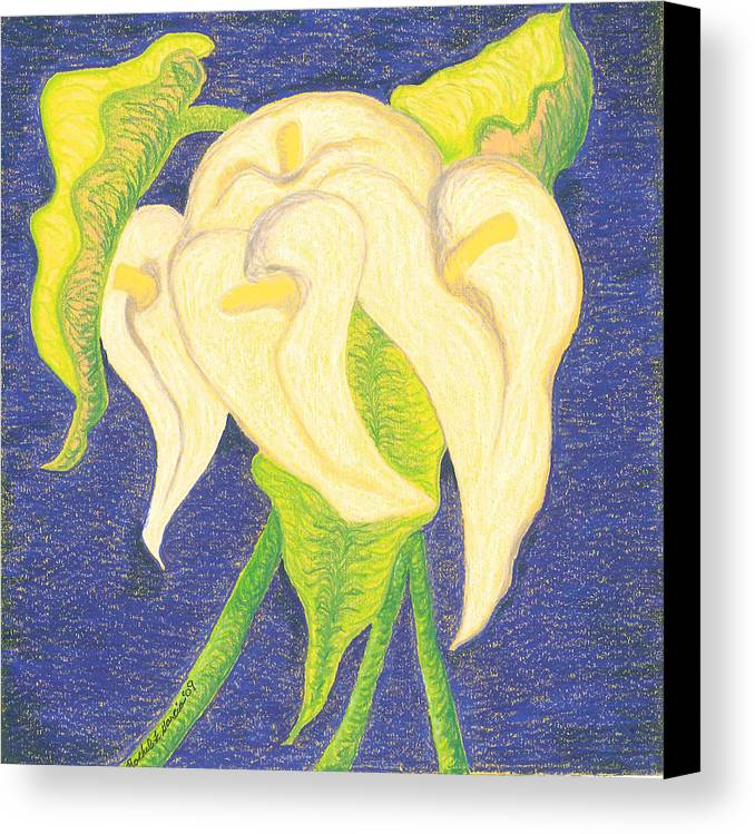 Lilies Canvas Print featuring the drawing Lilies by Rachel Zuniga