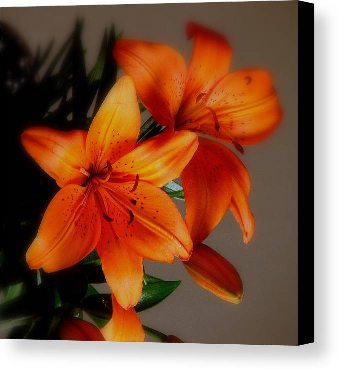 Orange Canvas Print featuring the photograph Orange Lilies by Judy Waller