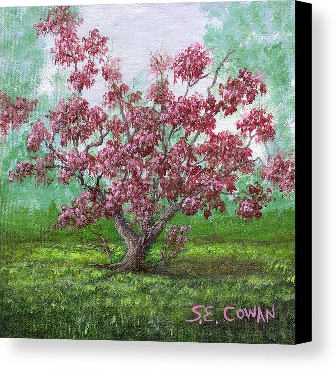 Landscape Canvas Print featuring the painting Pink Dogwood by SueEllen Cowan