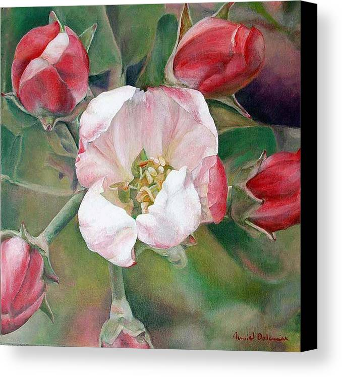 Floral Painting Canvas Print featuring the painting Pommier by Muriel Dolemieux