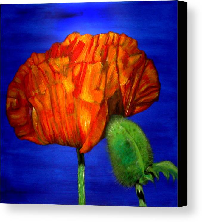 Flower Canvas Print featuring the painting Poppy And Bud by Fiona Jack