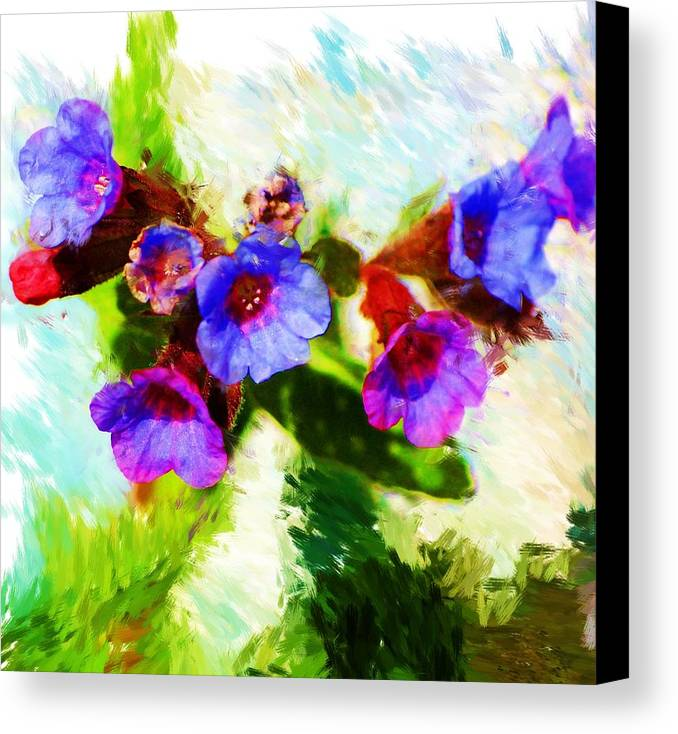 Abstract Canvas Print featuring the photograph Speckled Trout The Flower by David Lane