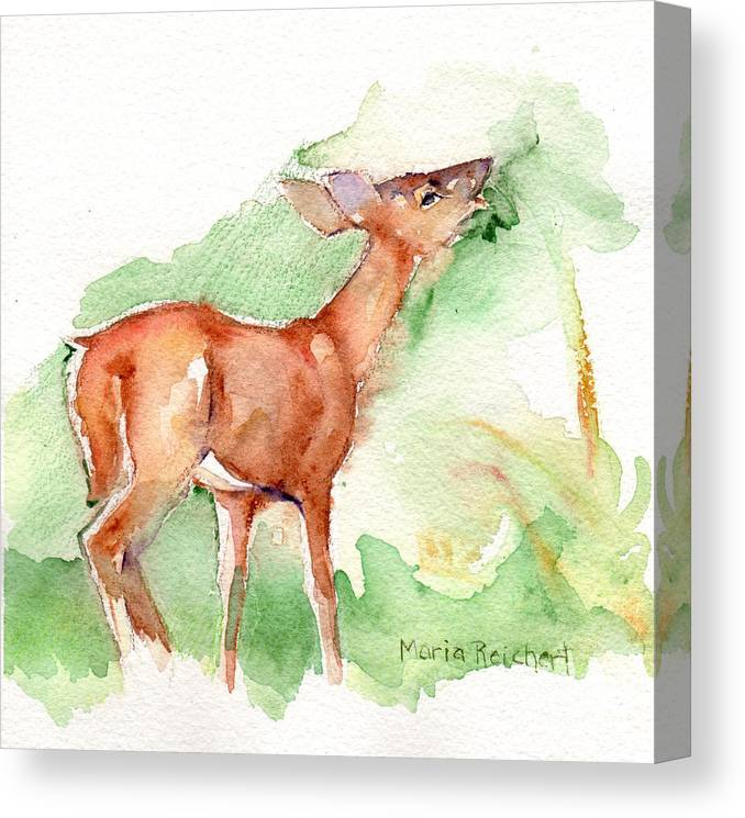 Deer Painting Canvas Print featuring the painting Deer Painting In Watercolor by Maria Reichert