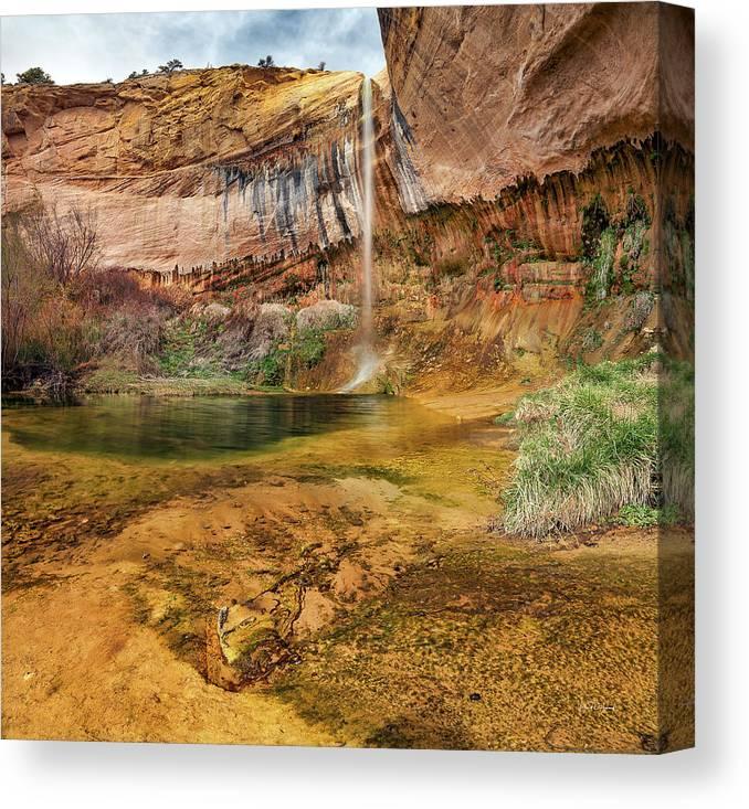 Nature Canvas Print featuring the photograph Upper Calf Creek Falls Utah by Leland D Howard