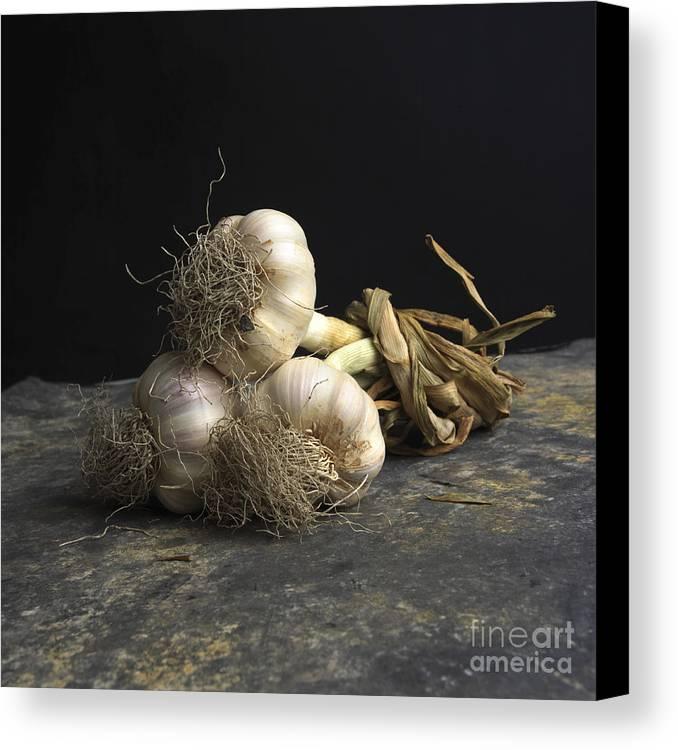 Indoors Canvas Print featuring the photograph Garlic by Bernard Jaubert