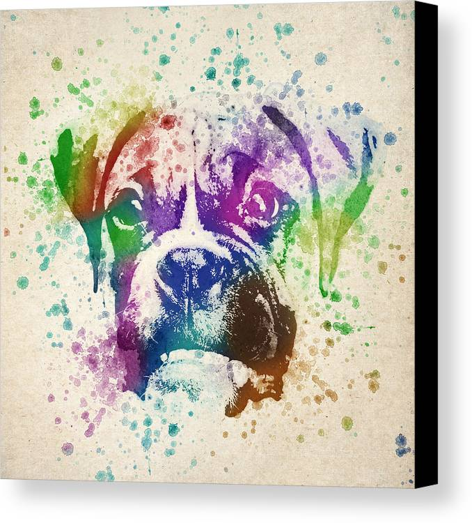 Boxer Canvas Print featuring the drawing Boxer Splash by Aged Pixel
