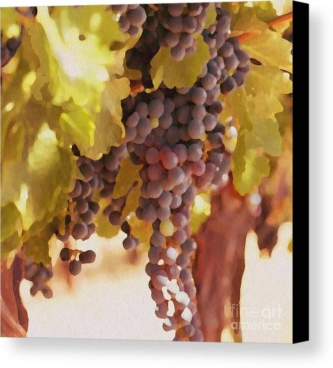 Grapes Canvas Print featuring the drawing Crush Time by Artist and Photographer Laura Wrede