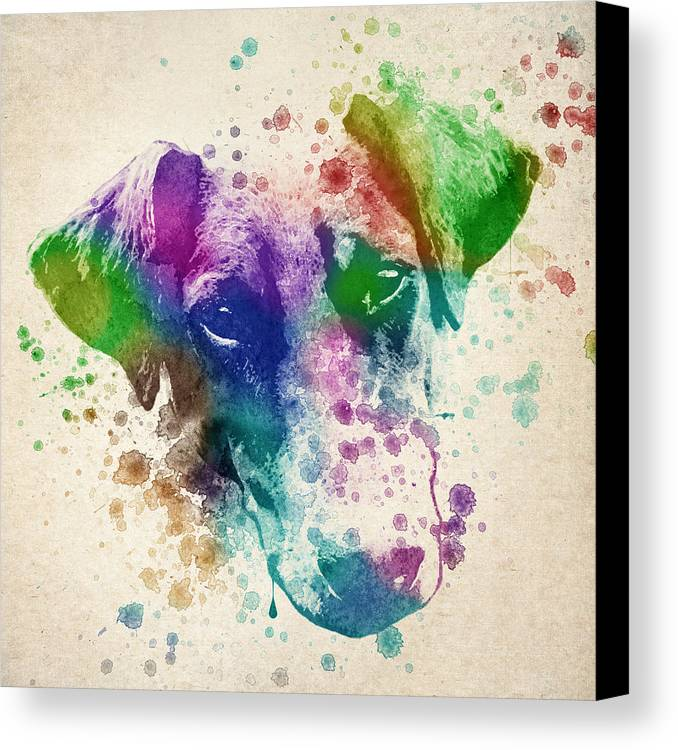 Doberman Canvas Print featuring the drawing Doberman Splash by Aged Pixel