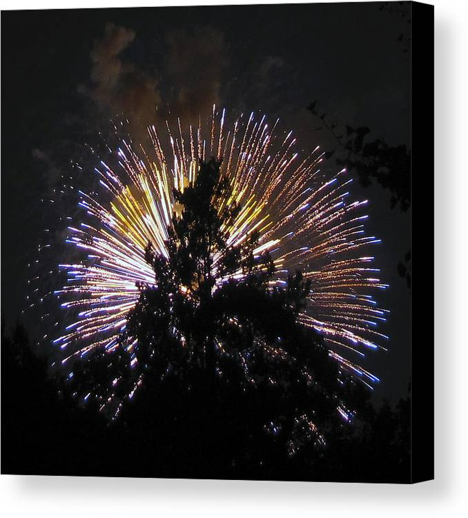 Smoke Canvas Print featuring the photograph Exploding Tree by Bob Slitzan