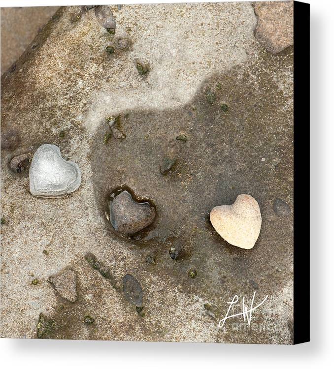 Heart Rocks Canvas Print featuring the photograph Heart Rock Love by Artist and Photographer Laura Wrede