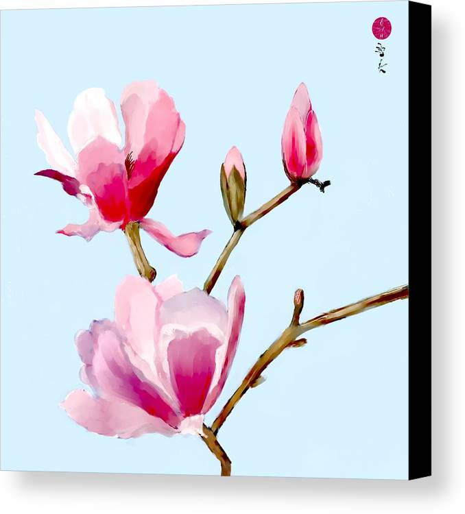 Magnolia Canvas Print featuring the digital art Magnolia Blossoms by Elaine Weiss