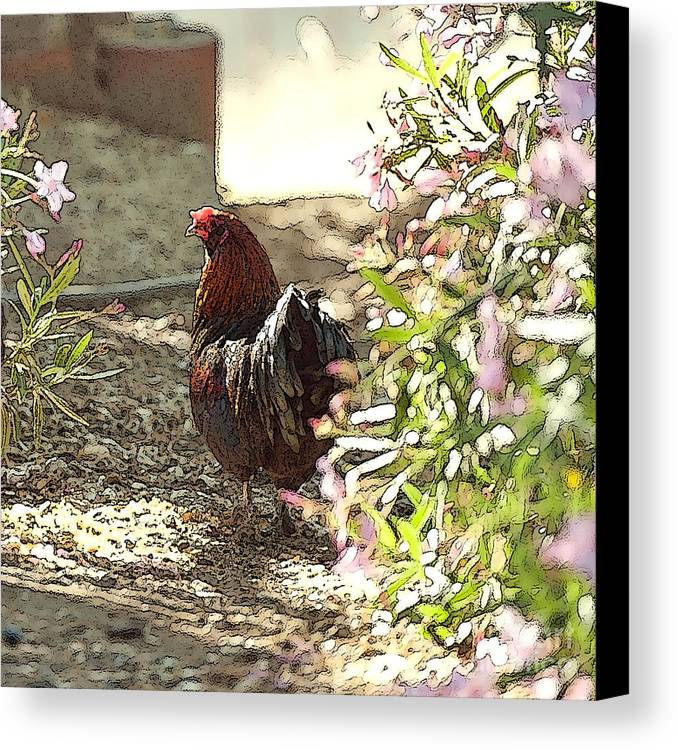 Rooster Art Canvas Print featuring the painting Mr. Rooster Takes A Stroll by Artist and Photographer Laura Wrede