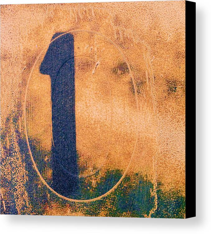 One Canvas Print featuring the photograph One In Zero by Carol Leigh