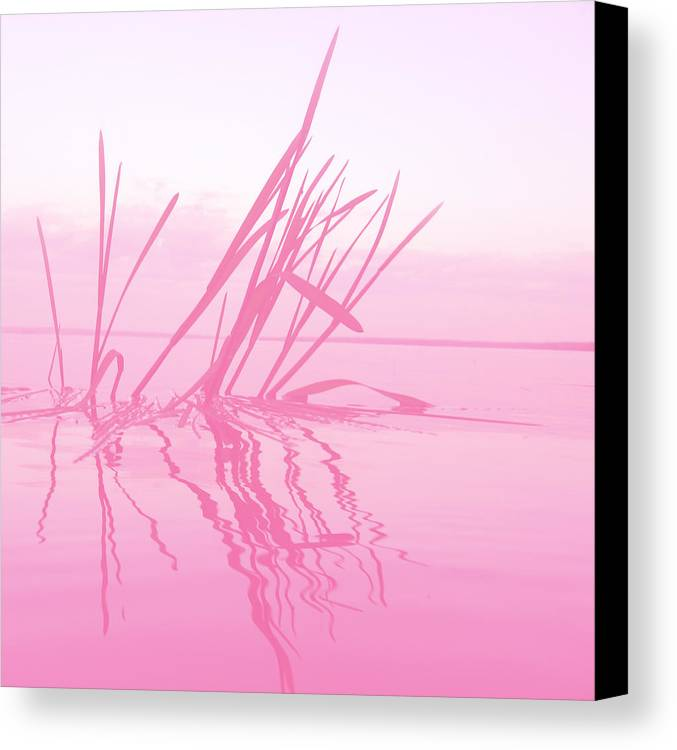 Lake Canvas Print featuring the digital art Rose Tinted Glasses by Veronica Ventress