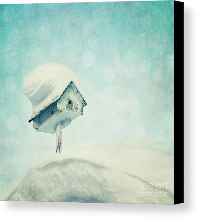 Snowbird Canvas Print featuring the photograph Snowbird's Home by Priska Wettstein