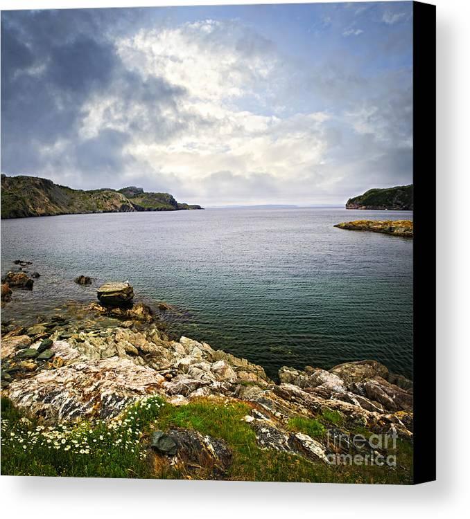 Coast Canvas Print featuring the photograph Atlantic Coast In Newfoundland by Elena Elisseeva