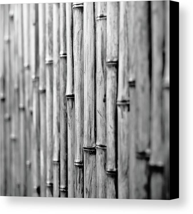 Square Canvas Print featuring the photograph Bamboo Fence by George Imrie Photography