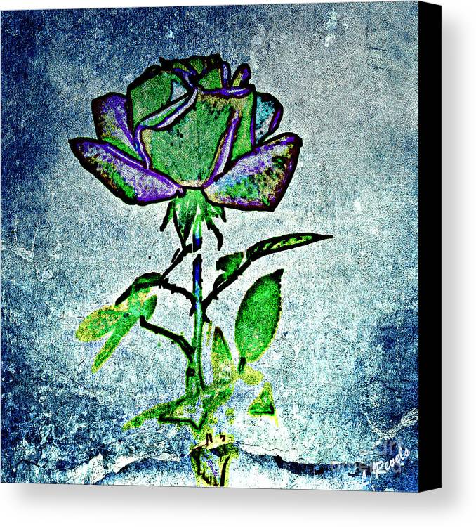 Flower Canvas Print featuring the photograph Blue Rose by Leslie Revels