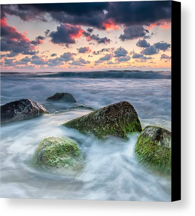 Black Sea Canvas Print featuring the photograph Green Stones by Evgeni Dinev
