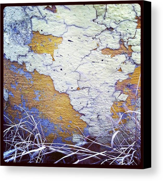 Chipping Paint Canvas Print featuring the photograph Painted Concrete Map by Anna Villarreal Garbis