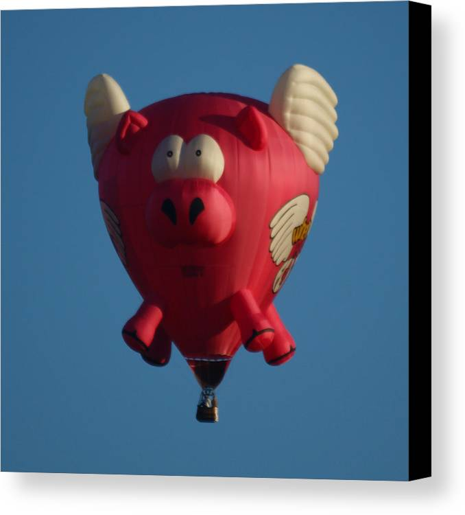 Balloons Canvas Print featuring the photograph Pigs Do Fly by Ernie Echols