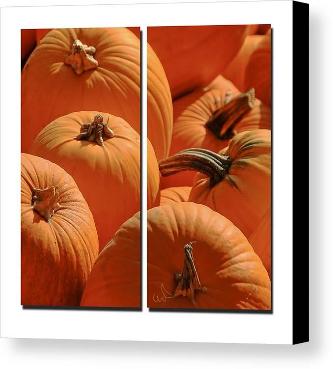 Pumpkin Canvas Print featuring the photograph Pumpkin Pumpkin by Michael Flood