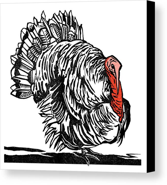 Meleagris Gallopavo Canvas Print featuring the photograph Turkey, Woodcut by Gary Hincks