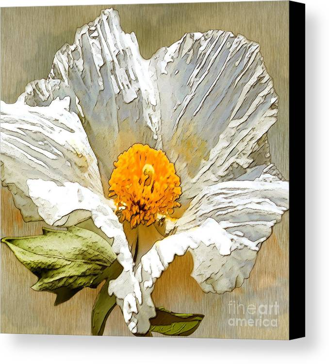 White Flower Canvas Print featuring the drawing White Paper Flower by Artist and Photographer Laura Wrede