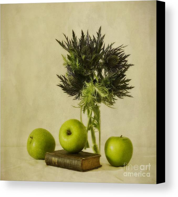Apples Canvas Print featuring the photograph Green Apples And Blue Thistles by Priska Wettstein