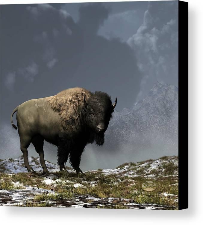 Bison Canvas Print featuring the digital art Lonely Bison by Daniel Eskridge