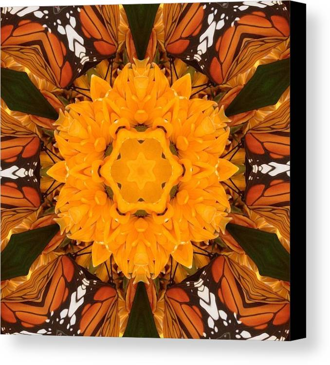 Kaleidoscope Canvas Print featuring the photograph Almost Butterflies Kaleidoscope by Pamela Picassito