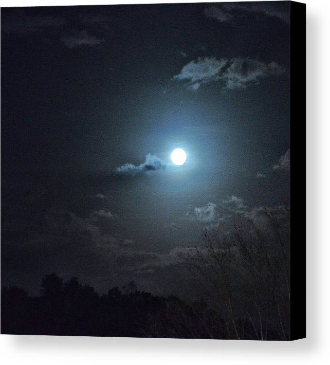 Landscape Canvas Print featuring the photograph Blue Moon by Christine DuMouchel