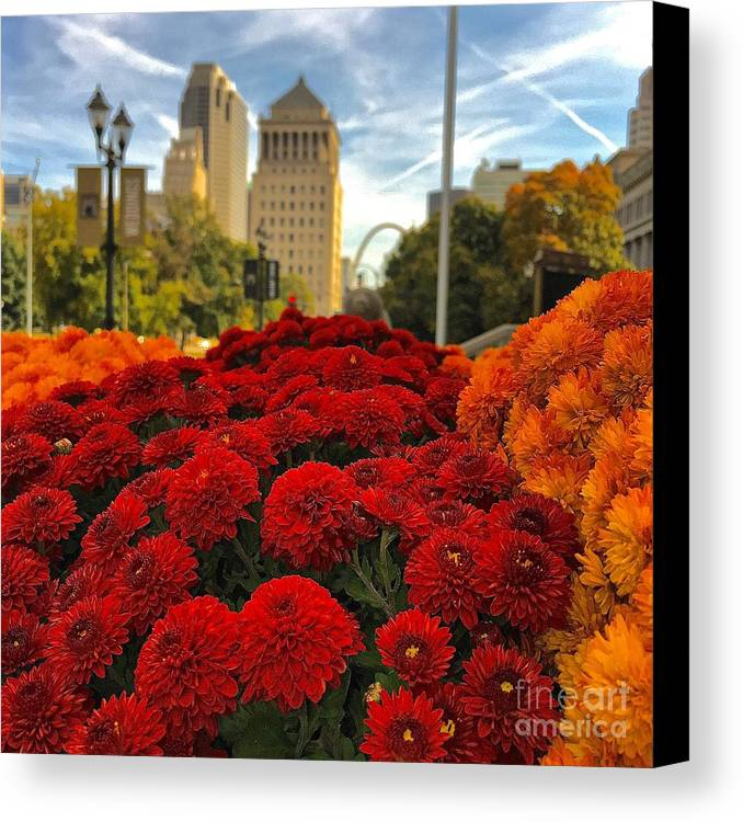 St Louis Missouri Canvas Print featuring the photograph Fall At The Peabody by Debbie Fenelon