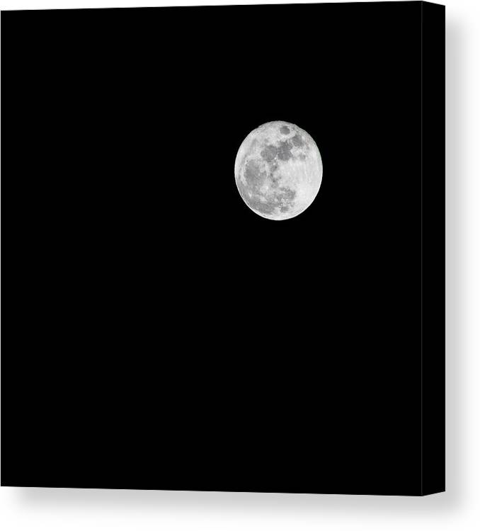 Moon Canvas Print featuring the photograph Fly Me To The Moon by Olivia Collins