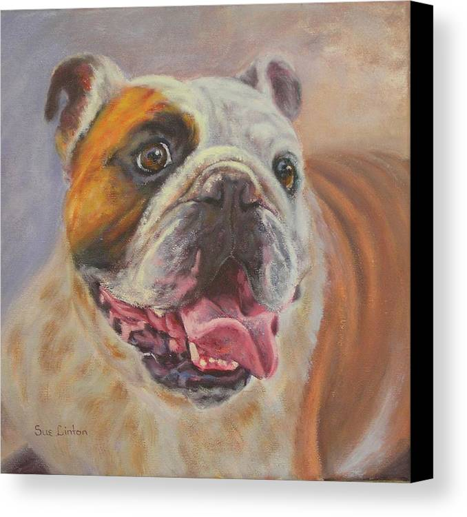English Bulldog Portrait Canvas Print featuring the painting Griff by Sue Linton