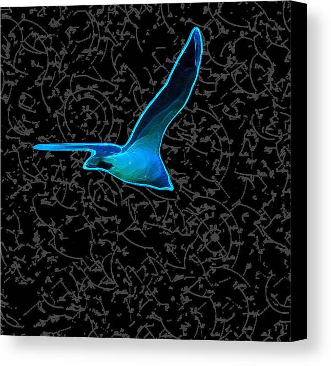 Canvas Print featuring the digital art Moewe - Seagull by Nils Denker