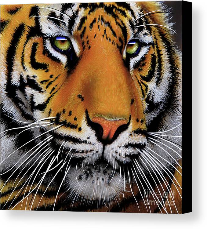 Tiger Canvas Print featuring the painting November Tiger by Jurek Zamoyski